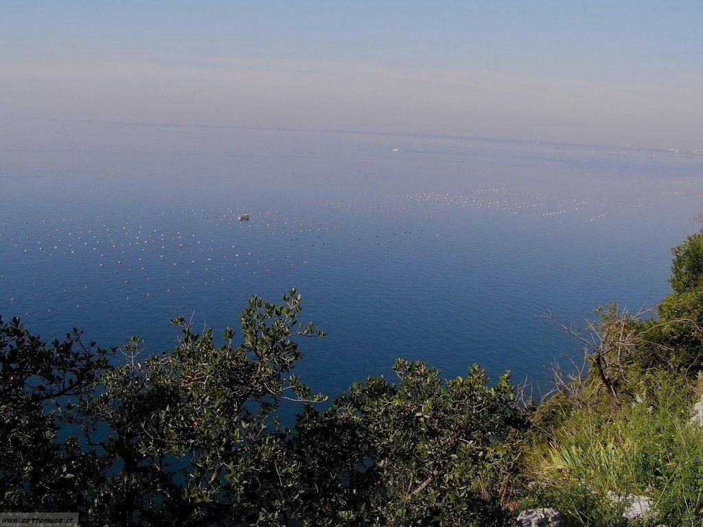 Trieste foto 24