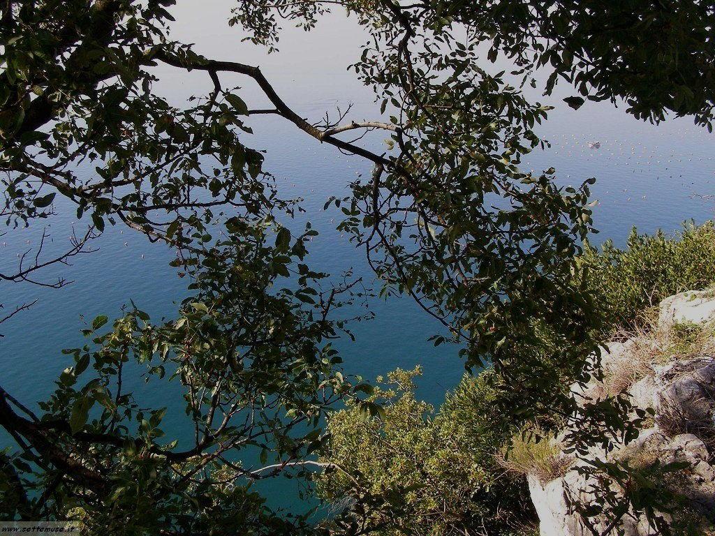 Trieste foto 26