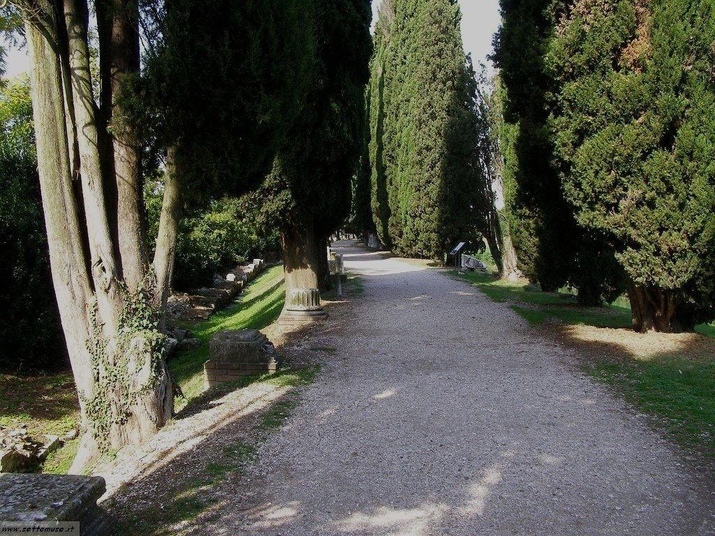 Aquileia foto 56
