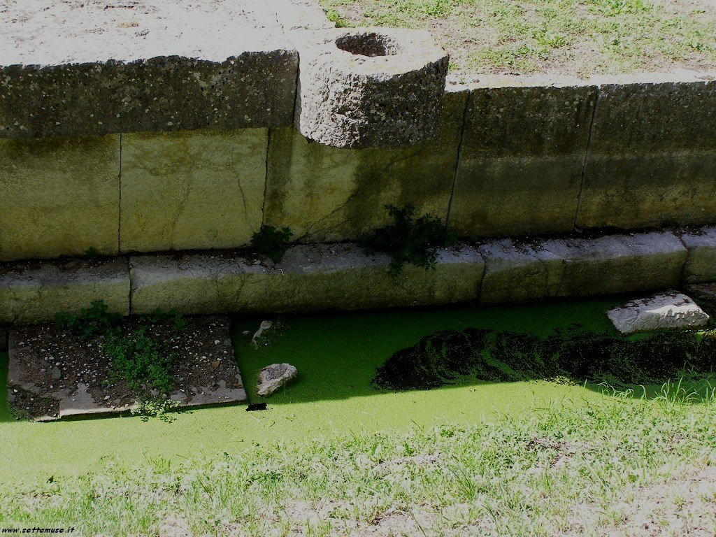 Aquileia foto 65
