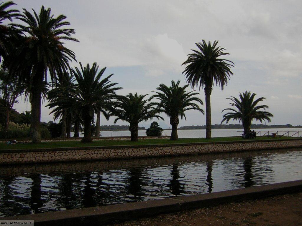 Lago di fogliano 10