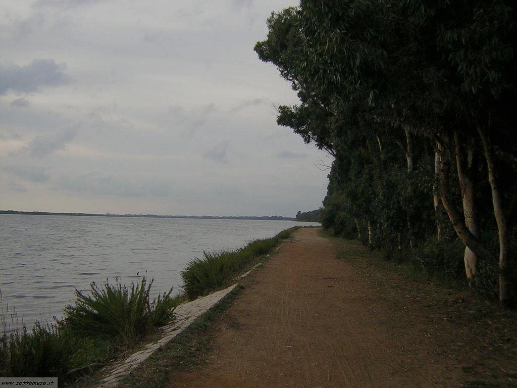 Lago di fogliano 16