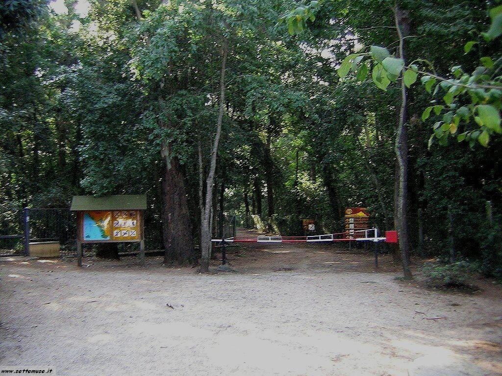 parco del circeo foto 1