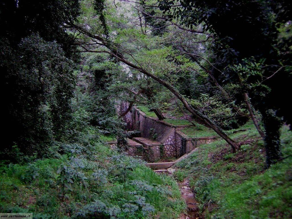 parco del circeo foto 202