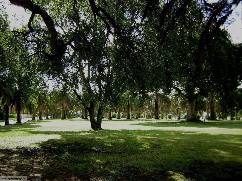 Sabaudia giardini