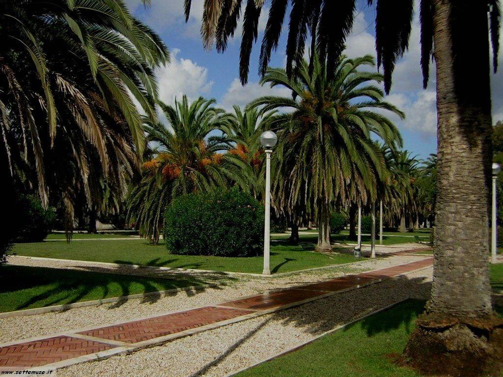 Sabaudia giardini pubblici 6