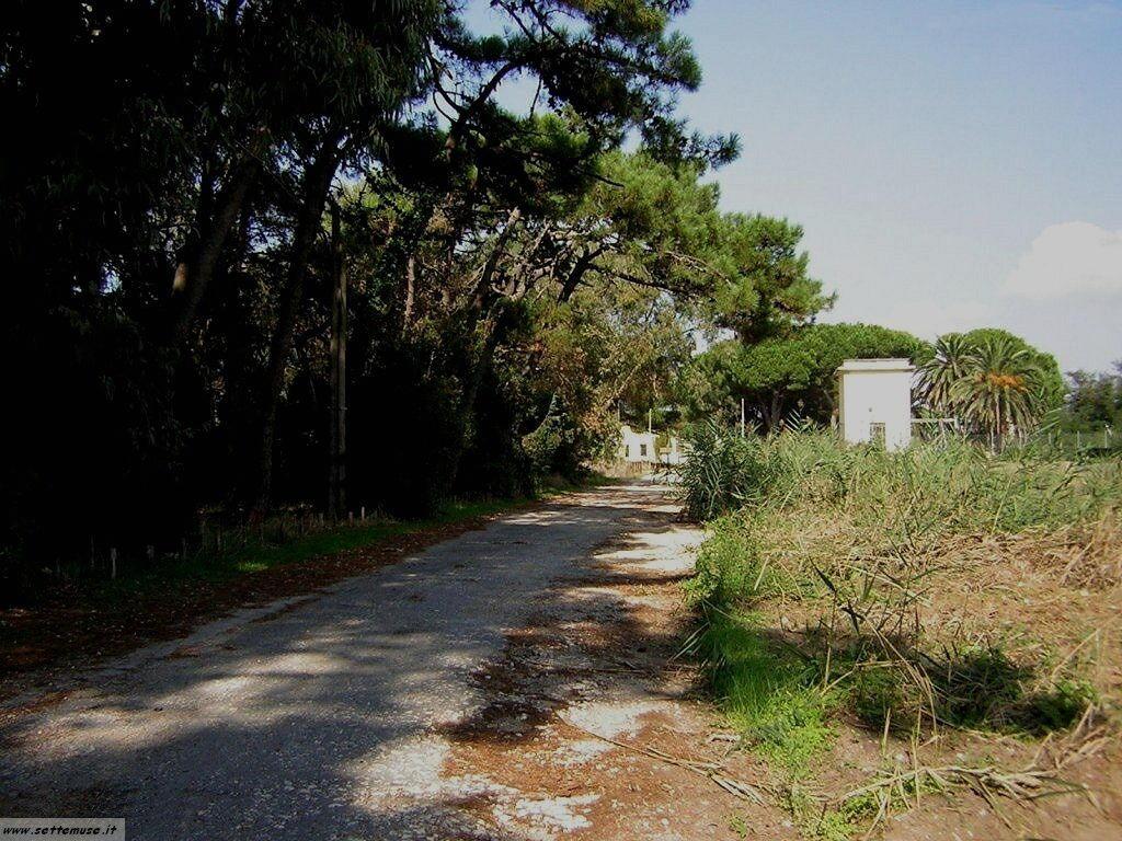 Sabaudia località Caterattino