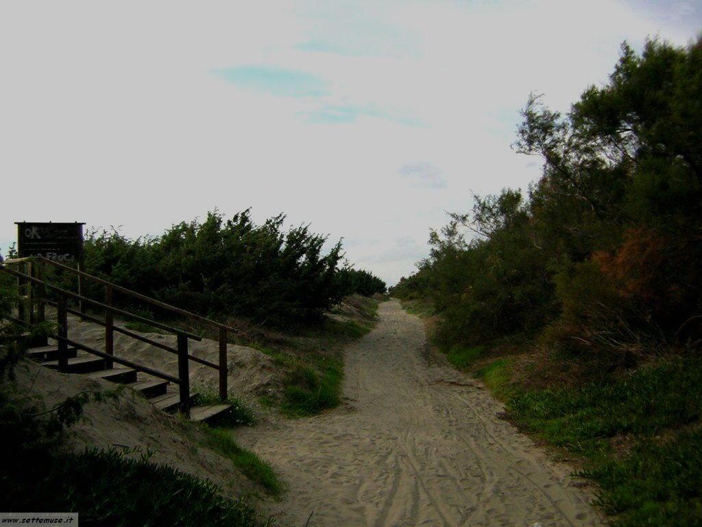 Le dune sul mare
