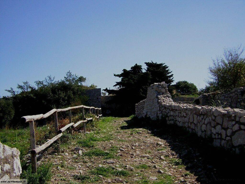 Terracina tempio di Giove 101