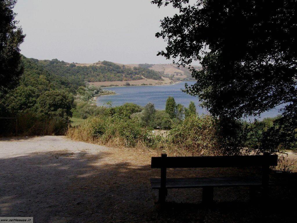 lago di martignano foto 51