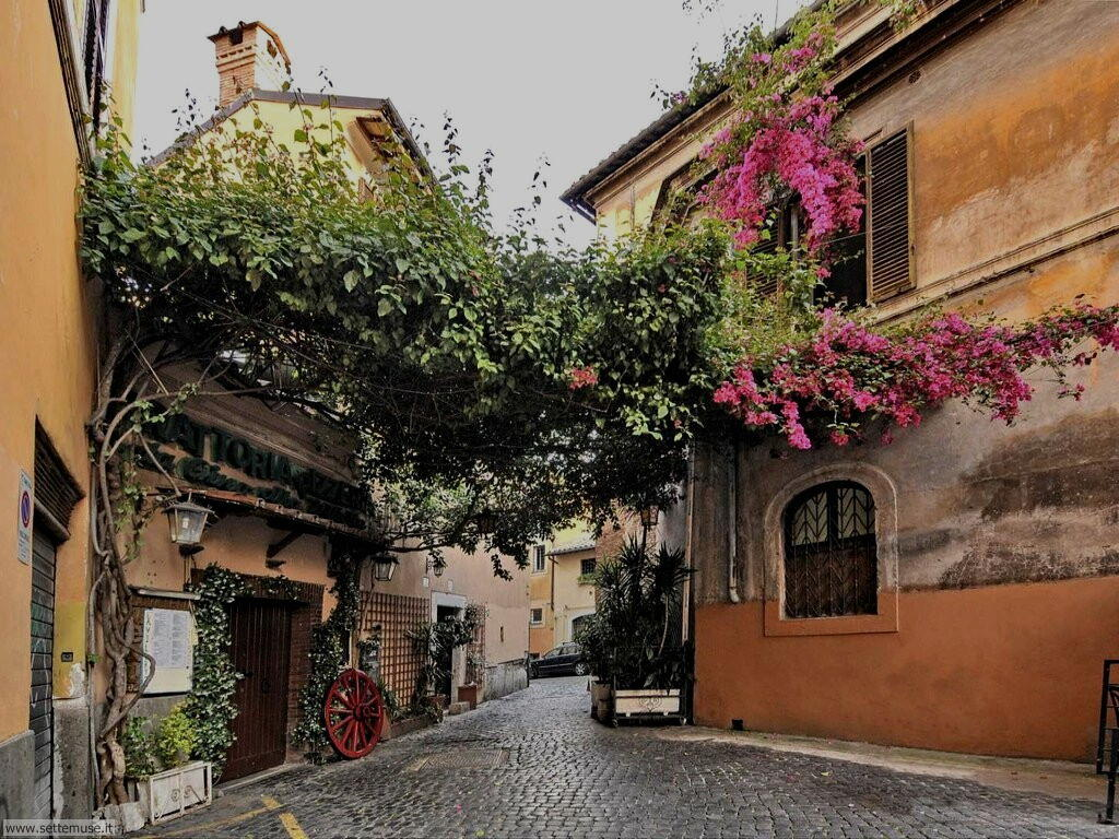 Roma per le strade di Roma foto 82