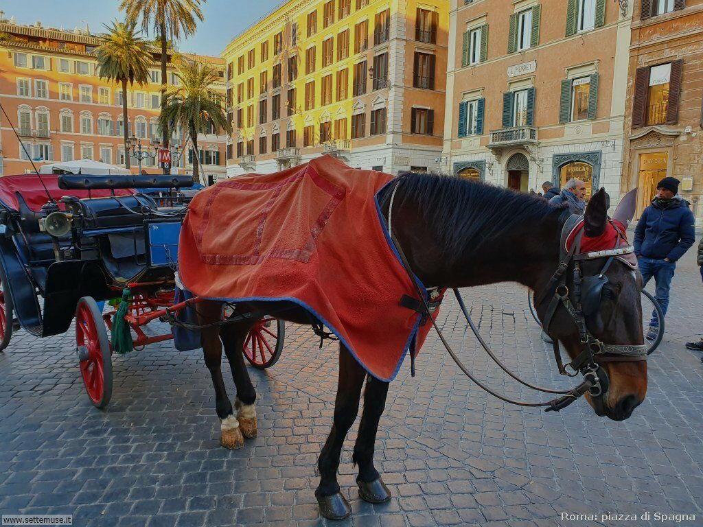 Roma piazza spagna