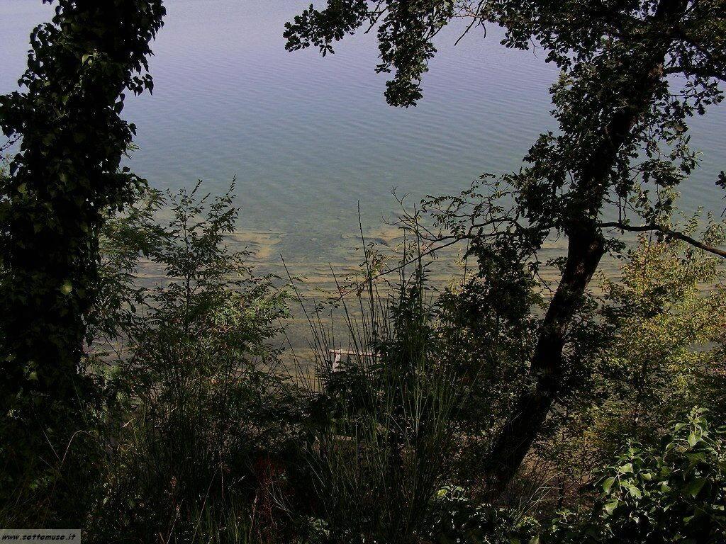 Lago di vico foto 21