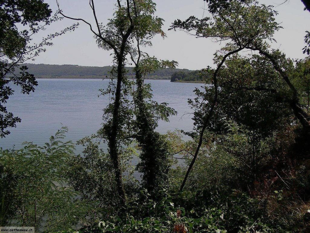 Lago di vico foto 22