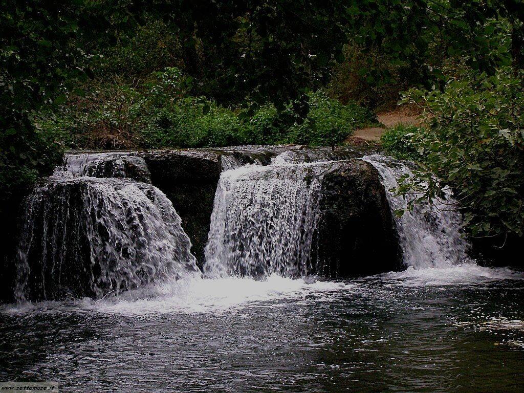 parco Valle del Treja foto 88