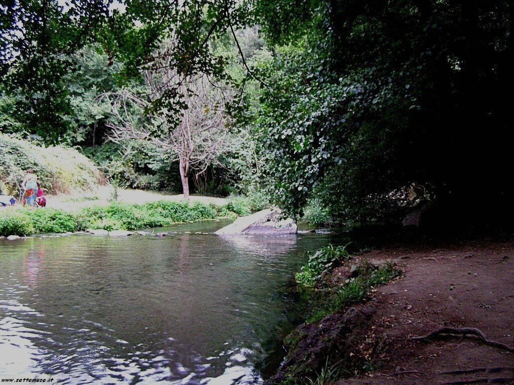 parco Valle del Treja foto 90