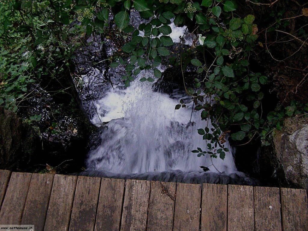 parco Valle del Treja foto 103
