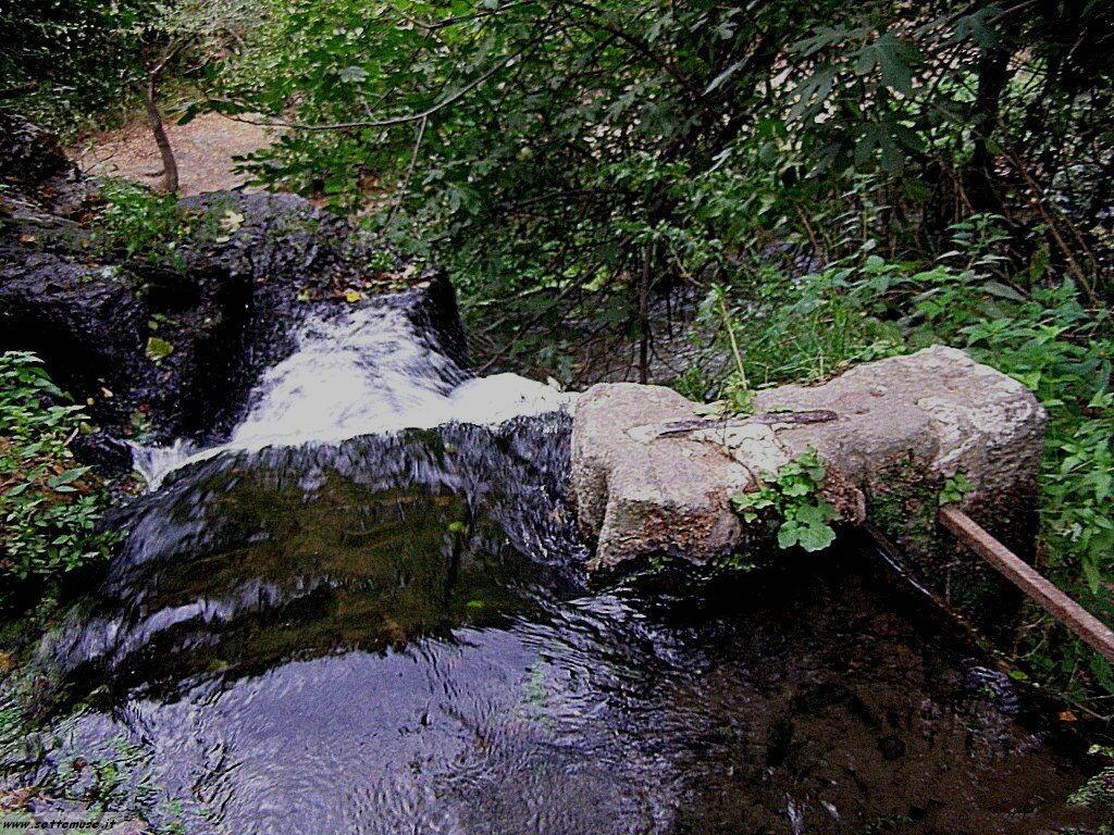 parco Valle del Treja foto 104