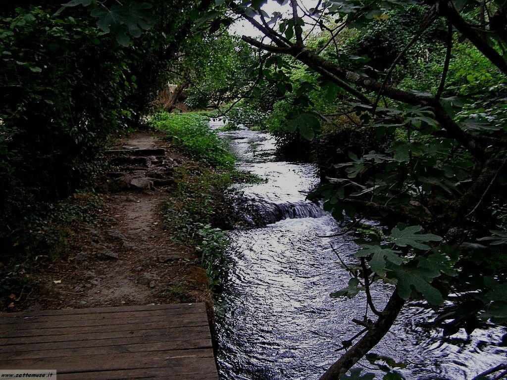 parco Valle del Treja foto 106