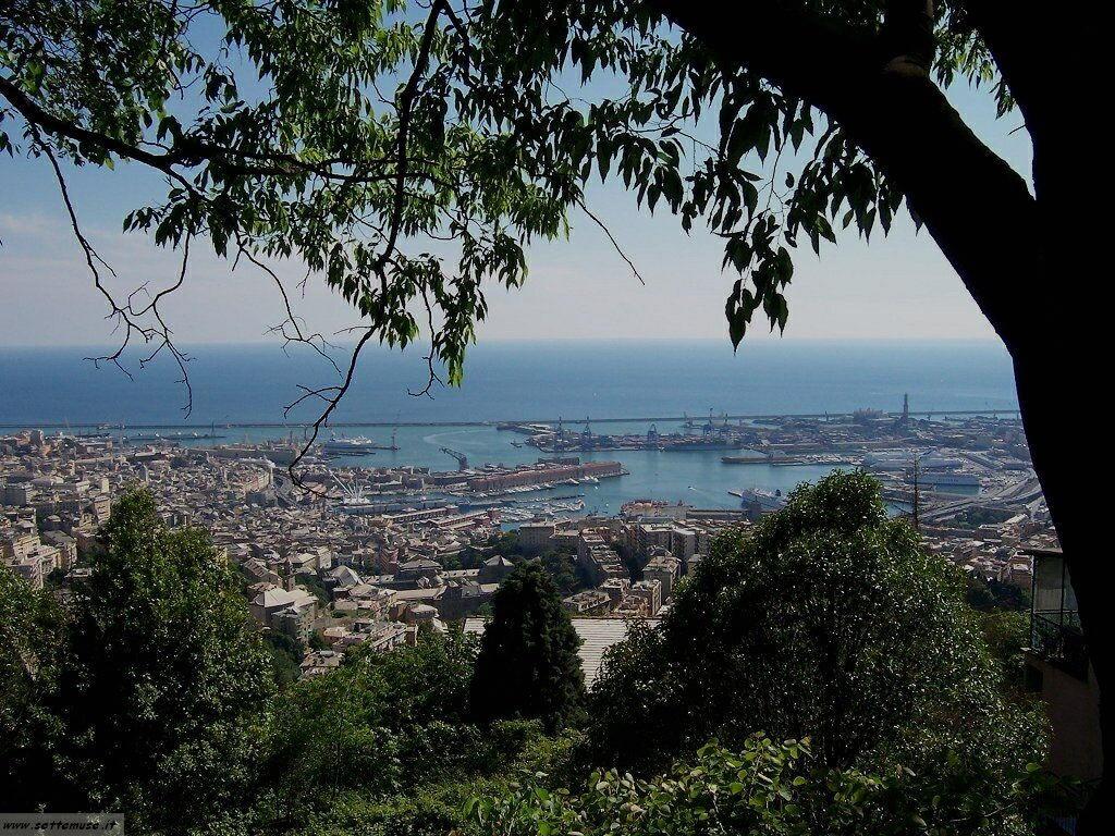 Foto Genova 3