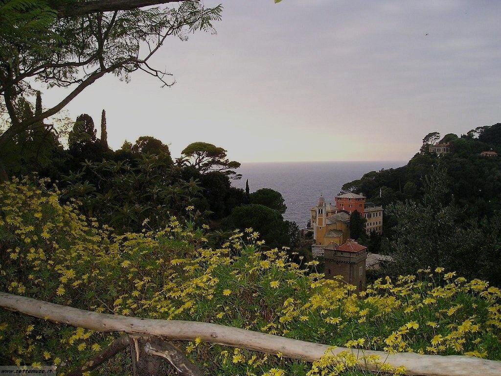 Portofino foto 1