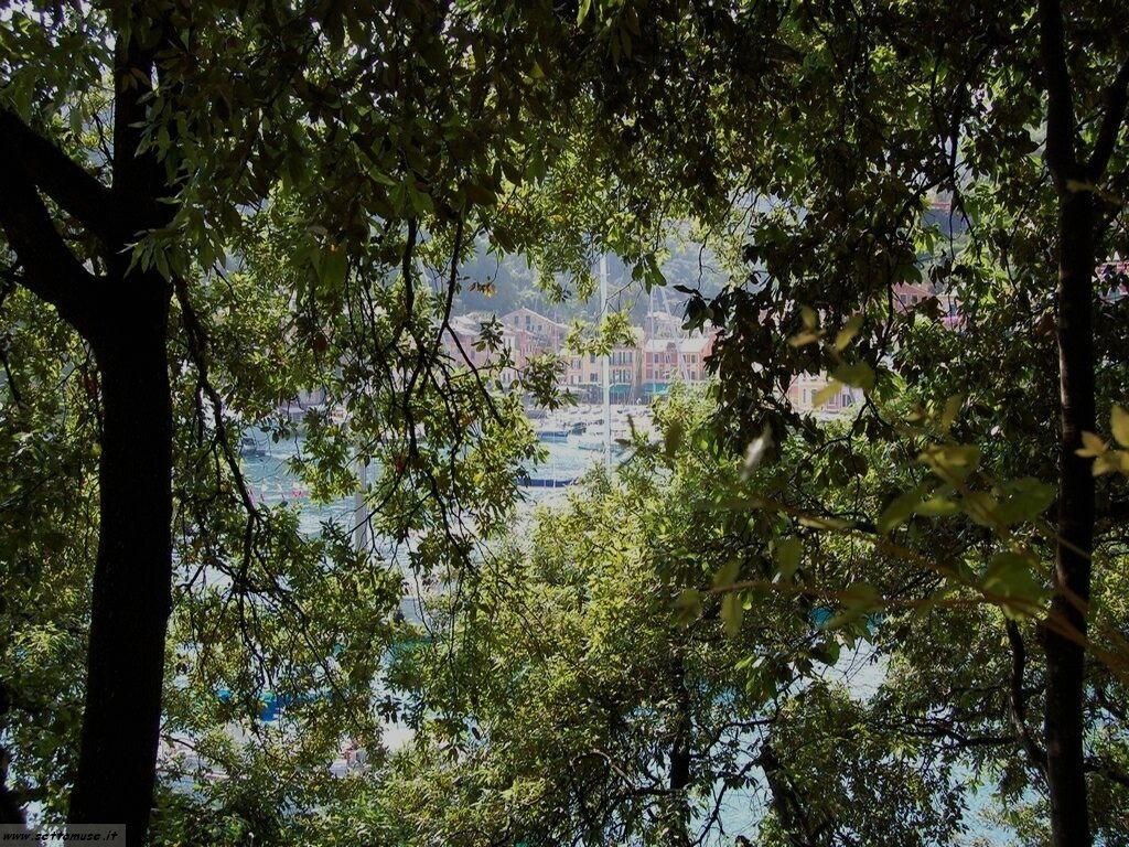 Portofino foto 128