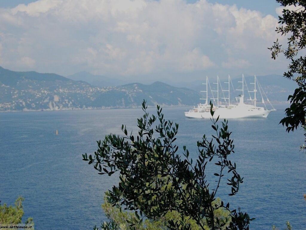 Portofino foto 135