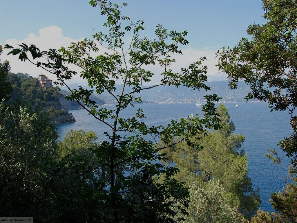 Portofino foto 136