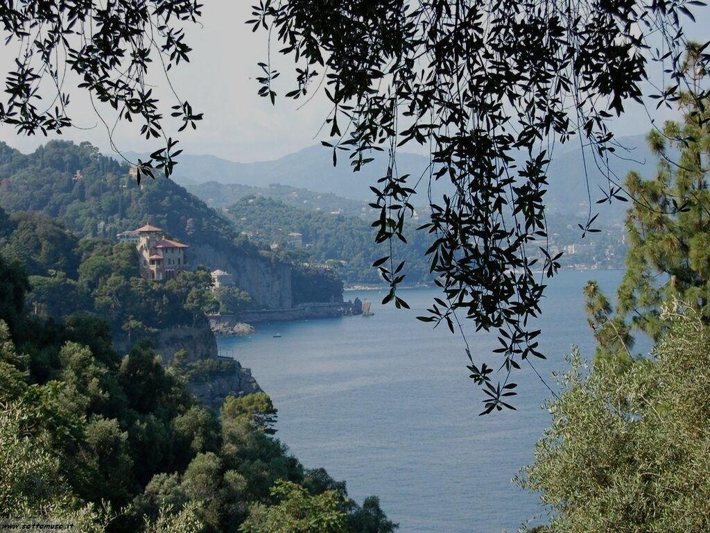 Portofino foto 147