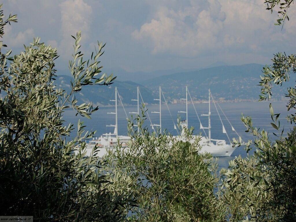 Portofino foto 149