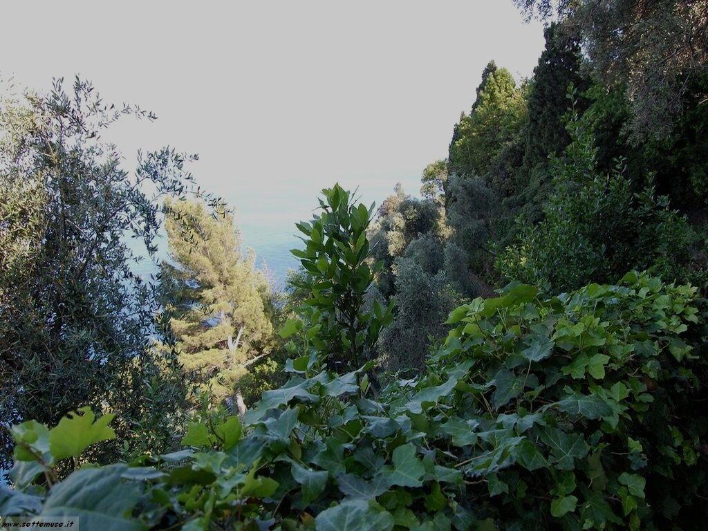 Portofino foto 150