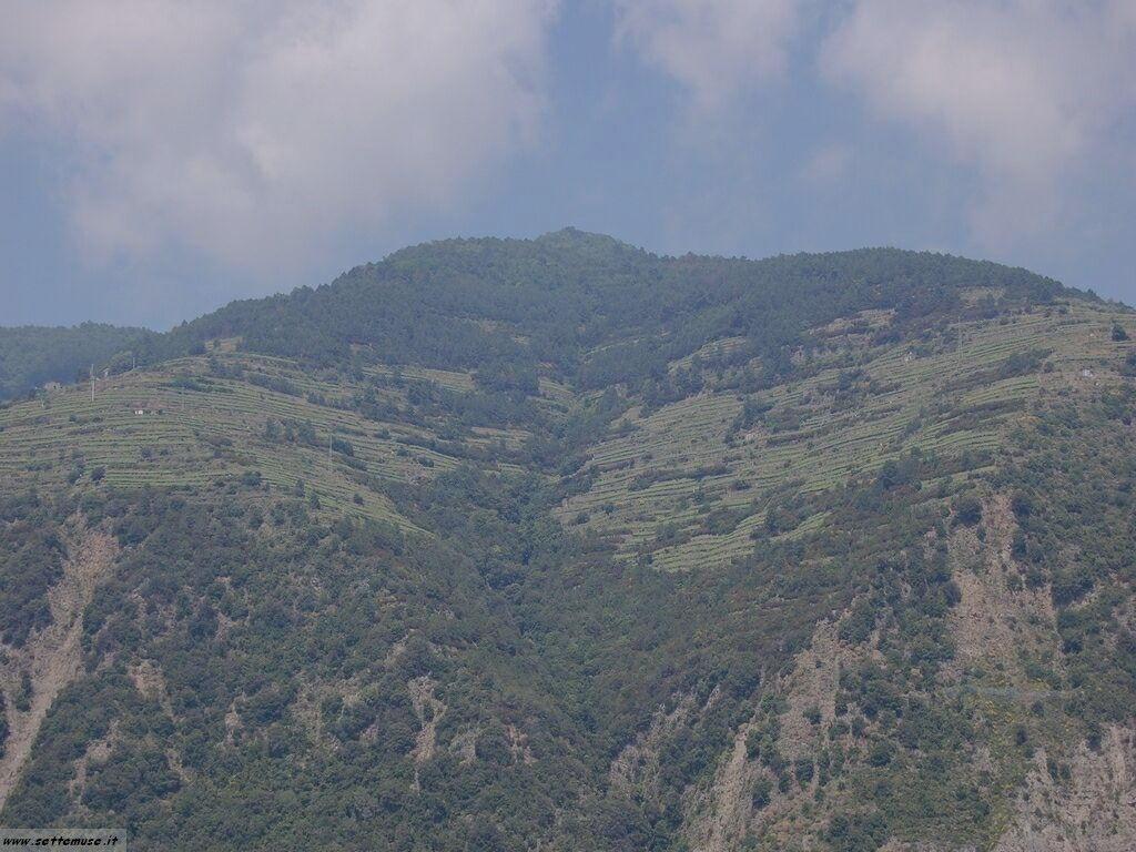 Borgo delle Cinqueterre foto 244