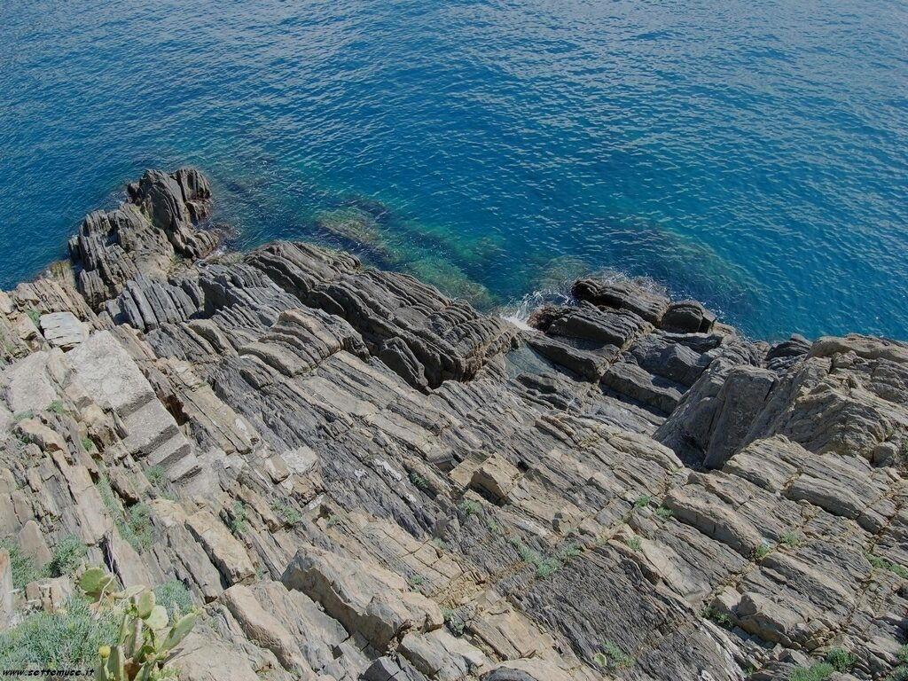 Foto Riomaggiore Cinque terre 297
