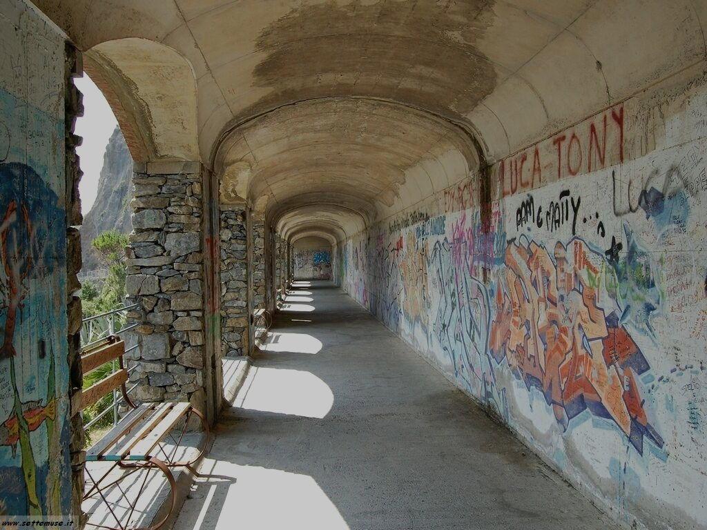 Foto Riomaggiore sentiero dell amore 309
