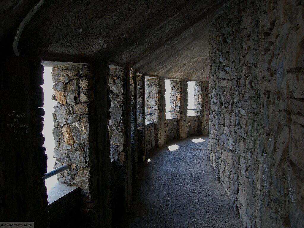 Foto Riomaggiore sentiero dell amore 314