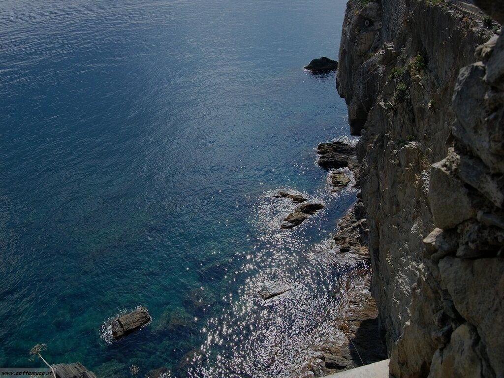 Foto Riomaggiore 316