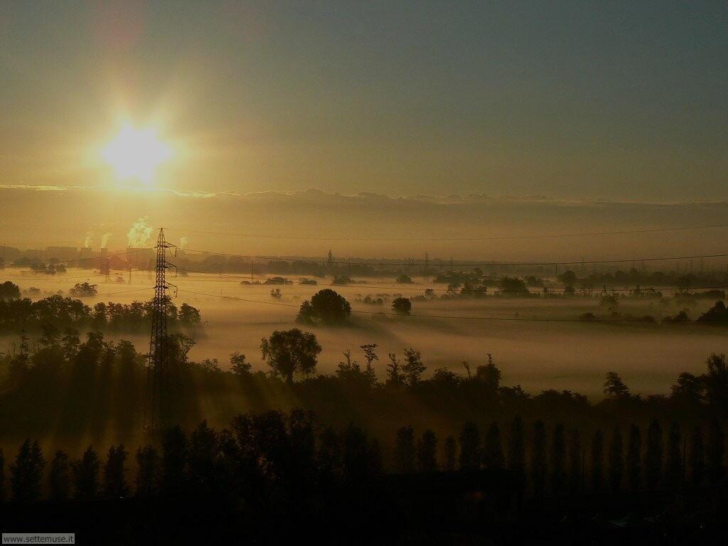 nebbia nel parco sud milano vicino chiaravalle