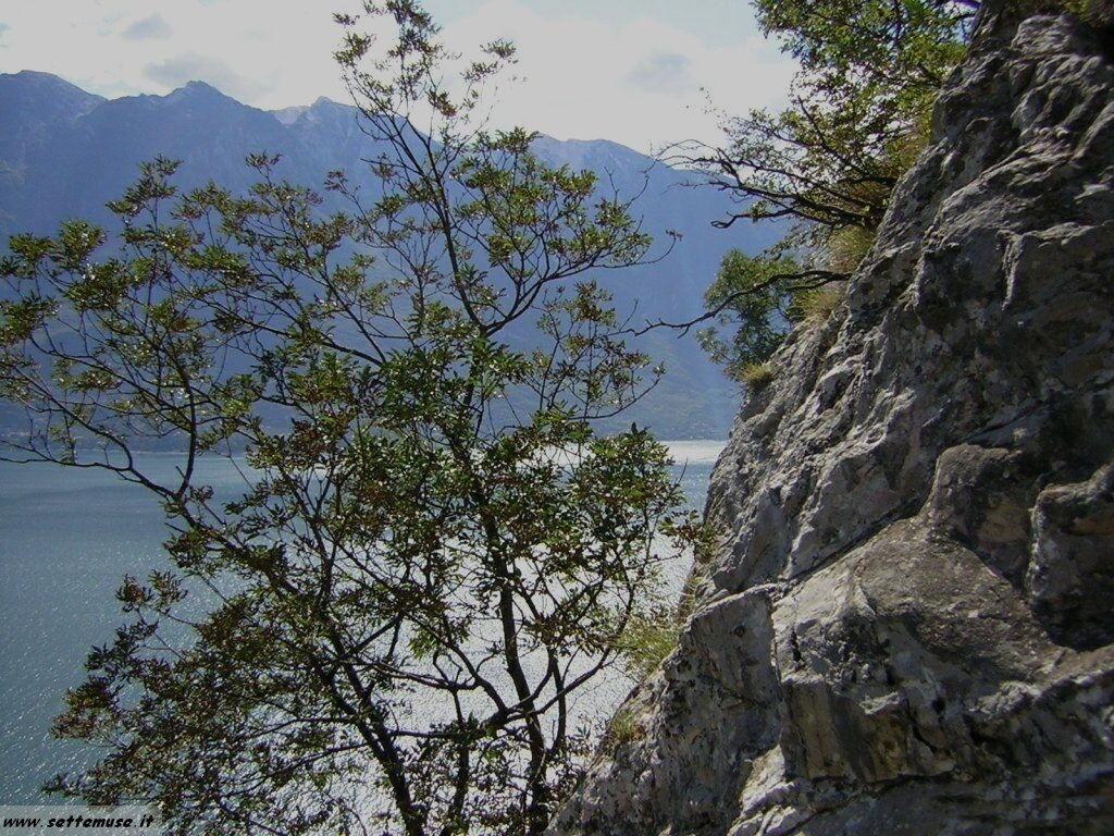 foto lago garda 07