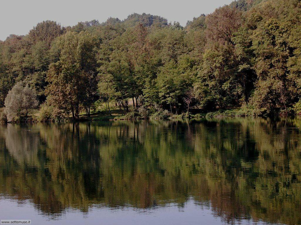 Golasecca fiume ticino foto