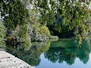 Golasecca fiume ticino guida e foto