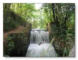 Uno scorcio del Parco delle Groane (www.settemuse.it)