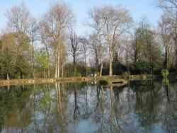 Parco delle Groane - laghetto di Ceriano