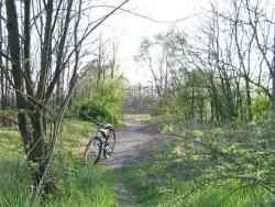 Parco delle Groane - 40km di piste ciclabili