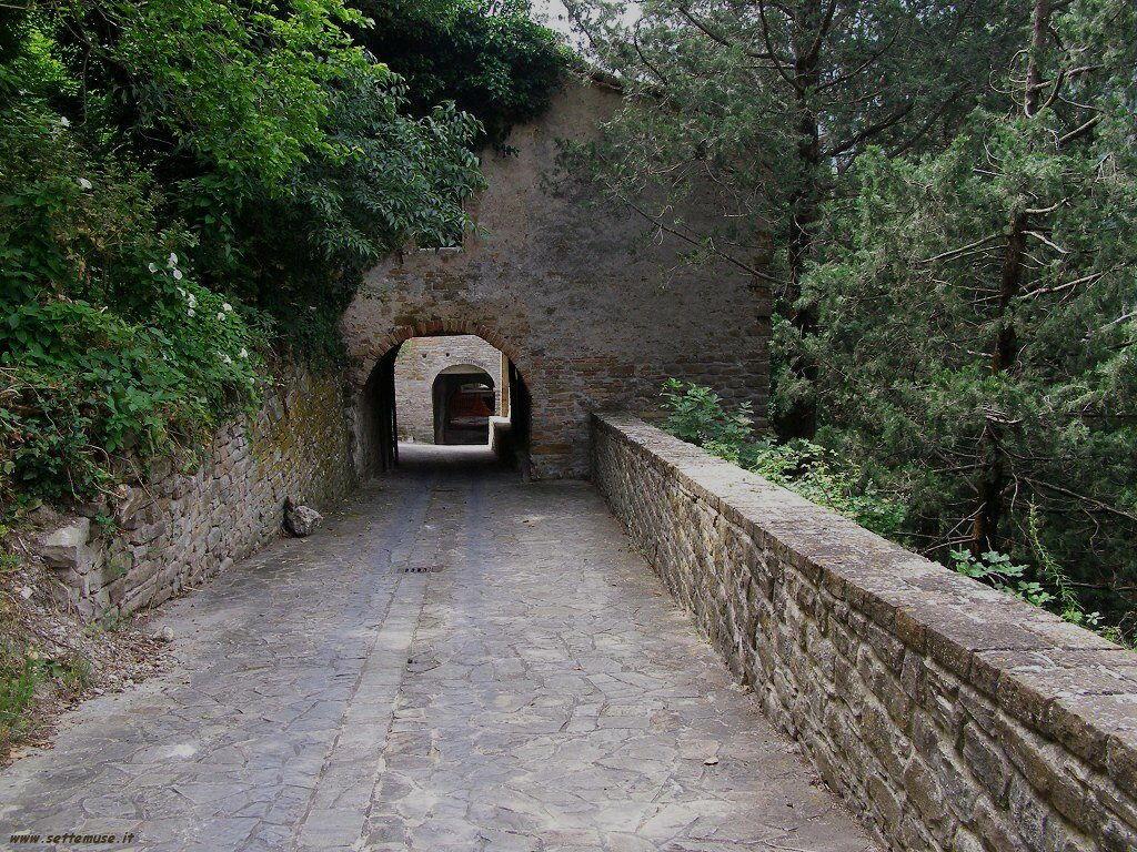 Una strada di Serra San Quirico
