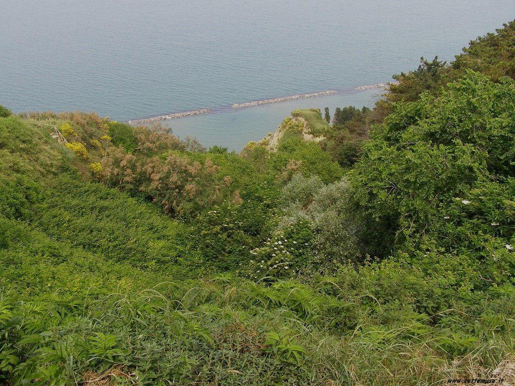 Panorama e mare a Fiorenzuola di Focara