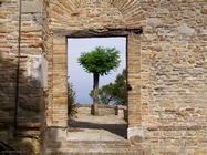 Pesaro-Urbino e dintorni
