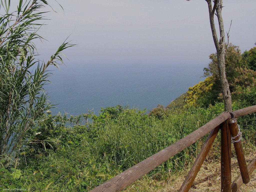 Sentiero per il mare a Gabicce monte