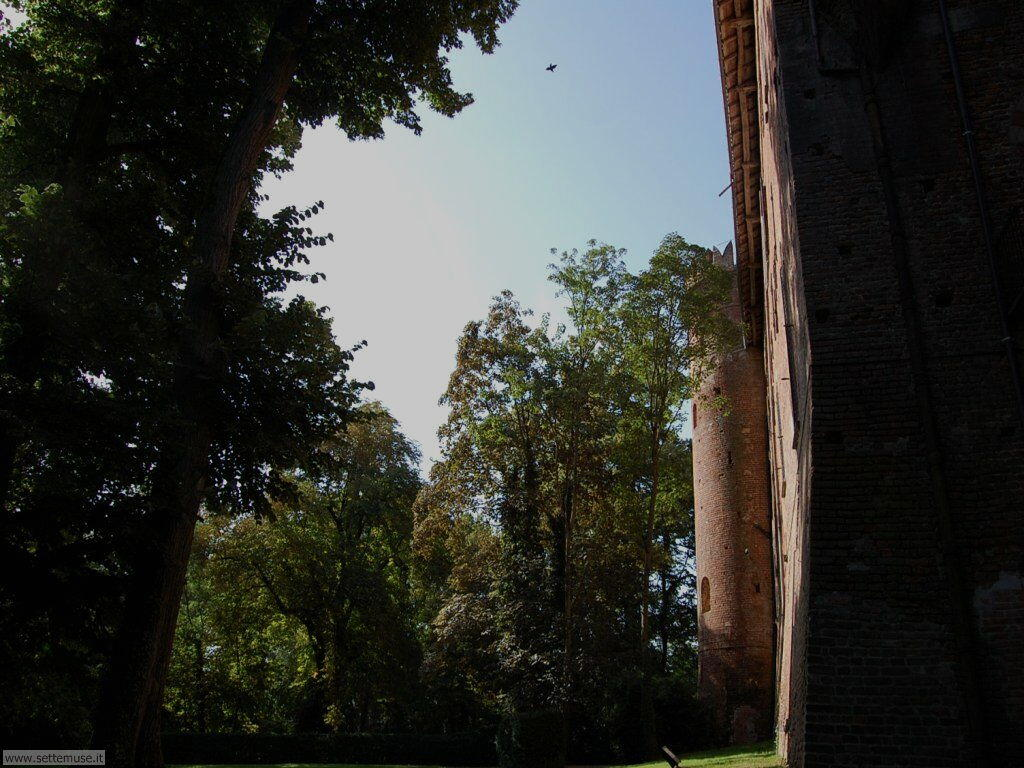 AL_masio_castello_redabue/masio_castello_redabue_049.jpg