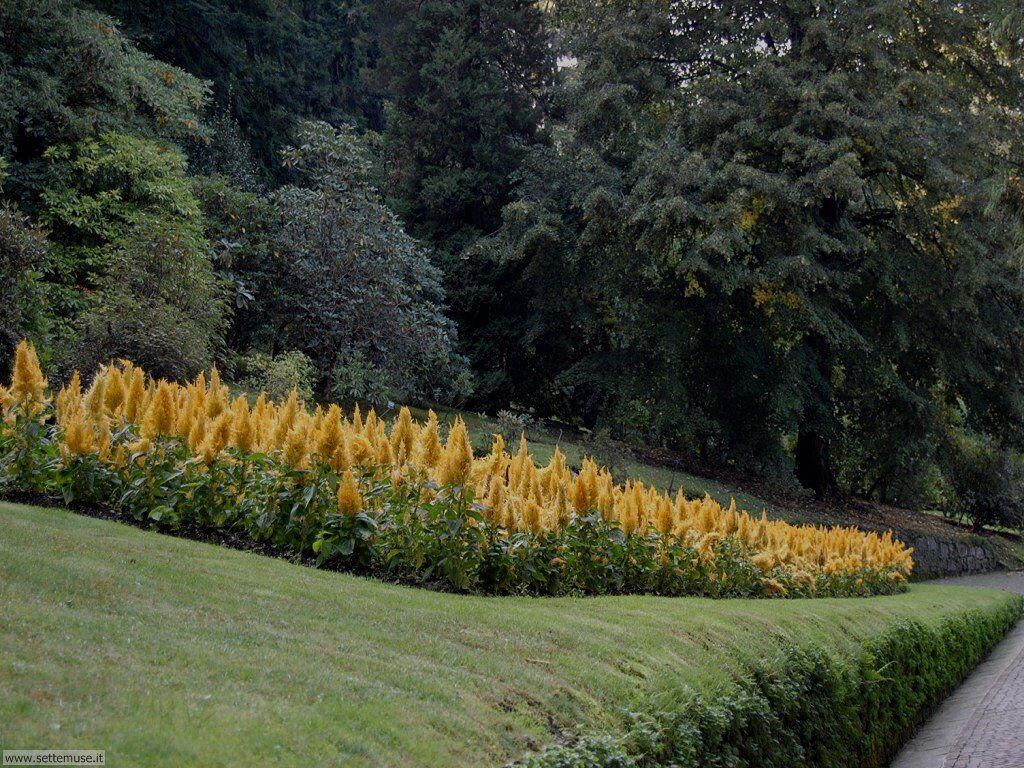 Visita al parco botanico di Villa Taranto a Verbania