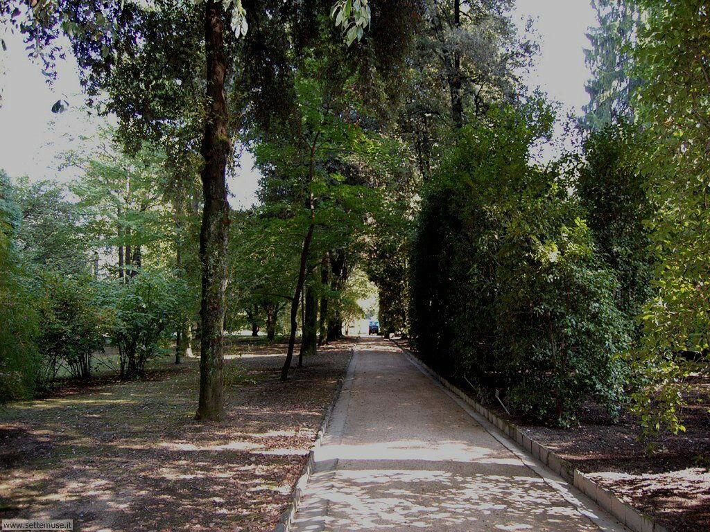 Alberi e viali di Villa Taranto